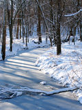 Midwest Winter Scenery. Shadows cast over a frozen creek in the Midwest United States royalty free stock photography