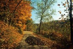 Midwestern jesieni scena z kolorowymi drzewami i jeziorem fotografia stock