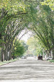 Midwestern Suburban Street in the United States. View of a typical street to be found in the United States with arching trees leading the eyes down the middle Stock Images