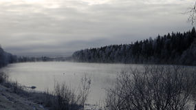 River and forest in winter Royalty Free Stock Photography