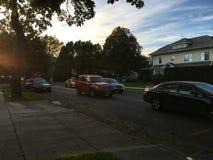 Midwood-Nachbarschaft Lizenzfreie Stockbilder