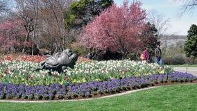 Mieć wielkiego dzień w ogródzie zdjęcie stock