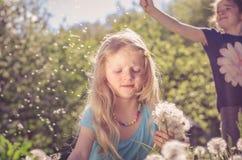 Mieć zabawę z dandelion kwiatami Zdjęcia Royalty Free