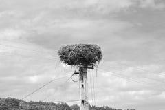mieści chłopa Typowy wiejski krajobraz w Bradeni, Henndorf, Hegendorf, Transylvania, Rumunia Obraz Stock