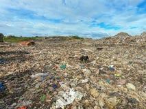 Śmieci w Miejskim wysypisku dla gospodarstwo domowe odpady obraz royalty free