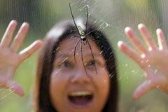 Miedo de la araña fotos de archivo