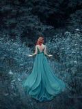Miedzianowłosa dziewczyna w błękitnej, szafirowej, luksusowej sukni w podłoga z otwartym i długim pociągiem, z powrotem Princess obrazy stock