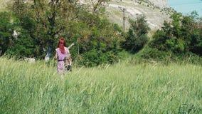 Miedzianowłosa dziewczyna w lilej sukni z plecakiem i torbą leczniczy ziele spacery przez trawiastej łąki, zdjęcie wideo