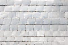 Miedziany dach  Zdjęcia Stock