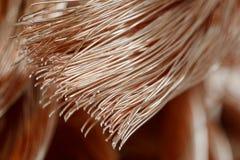 Miedziany drut Fotografia Stock