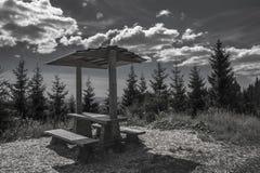 Miejsca siedzące w lesie Obraz Stock