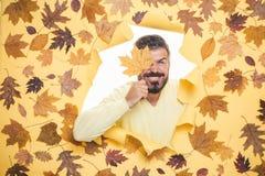 Miejsce dla twój teksta Jesieni moda i trend Cześć jesień i sen Odwiedza mój stronę CYFROWA reklama Jesień zdjęcie stock