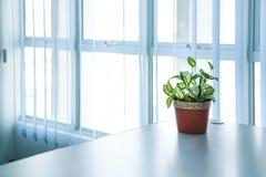 Miejsce pracy lub biura pok?j, prosty spojrzenie obraz royalty free
