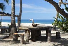 Miejsce spoczynku wzdłuż Karaiby Zdjęcia Royalty Free