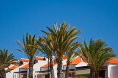 Miejscowości nadmorskiej strona z palmowymi frounds. Obraz Stock