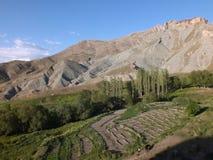 Miejscowy uprawia ziemię blisko Dogubeyazit (095) Obrazy Stock