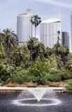 miejska oaza fotografia royalty free