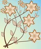miejski kwiat Zdjęcia Royalty Free