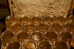 Miel amarilla de oro en el tarro de cristal en el marco de los comp del espacio de la copia del primer del tablero de madera llen Fotografía de archivo