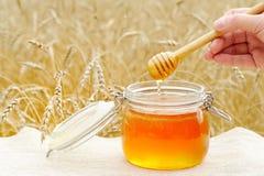 Miel aromática, fragante, vertida en un tarro de cristal Foto de archivo libre de regalías
