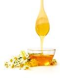 Miel avec des fleurs Photographie stock libre de droits