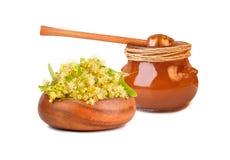Miel avec des fleurs de tilleul Photographie stock libre de droits