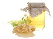 Miel avec le nid d'abeilles Photo libre de droits