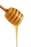 miel circulant de groupe Photographie stock libre de droits