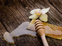 Miel con cera de abejas y la flor Fotografía de archivo libre de regalías