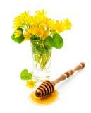 Miel con el cazo y las flores de madera Fotografía de archivo libre de regalías
