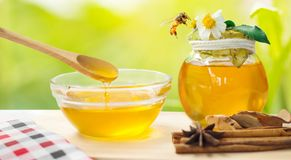 Miel con el fondo de la abeja y de la flor Fotos de archivo