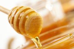 Miel con el palillo de madera Imagenes de archivo