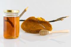 Miel con el panal Foto de archivo libre de regalías