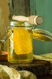 Miel con el peine de la miel en un tarro Fotos de archivo libres de regalías