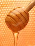 Miel con la colada de madera del palillo. Imágenes de archivo libres de regalías