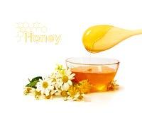Miel con las flores Foto de archivo libre de regalías