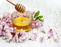 Miel con los flores del acacia Fotos de archivo libres de regalías