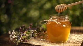 Miel délicieux dans le pot sur la table banque de vidéos