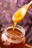 Miel d'égoutture de cuillère en bois Photographie stock libre de droits