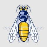 Miel d'abeille. insecte de piqûre illustration stock