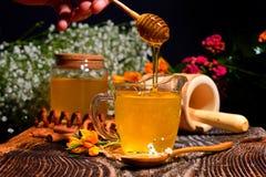 Miel d'or et fleurs colorées photo stock
