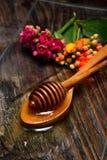 Miel d'or et fleurs colorées Photos stock