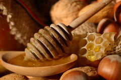 Miel d'or et fruits écossés Photo libre de droits
