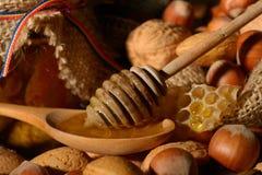 Miel d'or et fruits écossés Photographie stock libre de droits