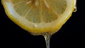 Miel de colada en el limón fresco de la rebanada contra fondo negro almacen de metraje de vídeo