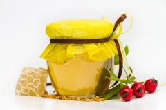 Miel de fines herbes d'isolement photo stock