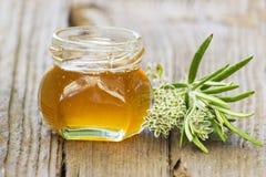 Miel de fines herbes et herbes fraîches Photographie stock