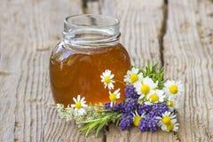Miel de fines herbes et herbes fraîches Photo libre de droits
