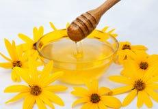 Miel de fleur Photo stock