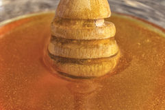 Miel de la abeja con el cazo de madera Foto de archivo libre de regalías